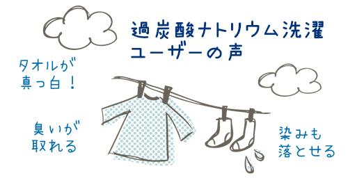 過炭酸ナトリウム(酸素系漂白剤)での洗濯 ユーザーの声 | 実践・実験 ...