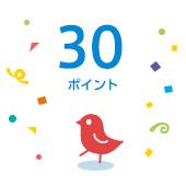 ポイント賞(30pt)